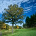 Golf Course 17th Hole Manchester CC photography