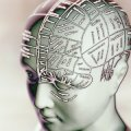 Phrenology Photography Illustration