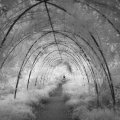 Infrared Black and White Landscape photography Scotland